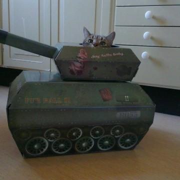 キジトラ猫子猫戦車の猫画像
