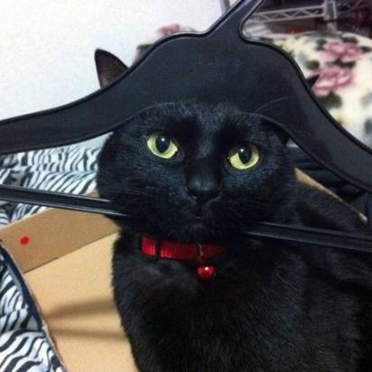 黒猫ハンガー